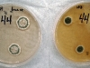 Penicillium brevicompactum culture